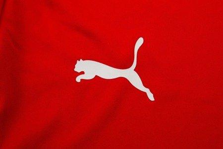 Koszulka Puma Final Training