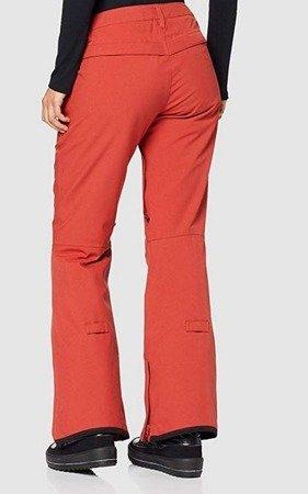 Spodnie Burton Wb Society Pt